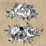 Floral set, of hand drawn flowers, roses, peones Boho chic style for invitation, t-shirts Stock Photos