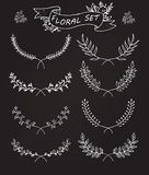 Floral set Royalty Free Stock Images
