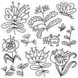 Floral set. Isolated flowers and leaves. Vector illustration with natural objects and plants and butterfy stock photo