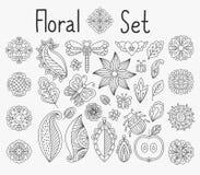 Floral set with leaves and mandalas. Vector floral set with leaves and herbs, bugs and butterflies hand drawn mandala elements Royalty Free Stock Photos