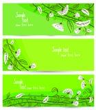 Floral set Stock Photos