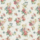 Εκλεκτής ποιότητας αυξήθηκε Floral Shabby κομψός ταπετσαριών Στοκ φωτογραφία με δικαίωμα ελεύθερης χρήσης