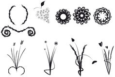 Floral shapes Stock Images