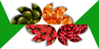 Floral shapes full of fruity textures Stock Photo