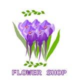 Floral shop Stock Photo