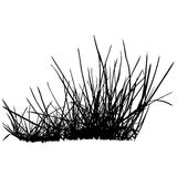 Floral silhouette 10. High detailed black & white illustration Royalty Free Stock Photo