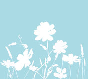 Floral silhouettes Stock Images