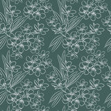Floral sketch pattern Royalty Free Stock Images