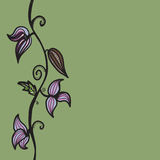Floral sketches Royalty Free Stock Images