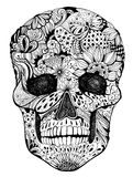 Floral skull Stock Photos