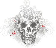 Floral skull illustration Royalty Free Stock Photo