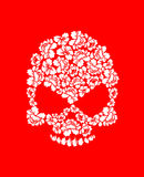 Floral skull on red background. White roses and skeleton head. B Royalty Free Stock Photography