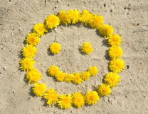 Floral smile. Smile symbol made of yellow dandelions on sand Stock Images