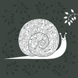 Floral snail Stock Images