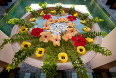 Floral Spa arrangement. Floral decor with exotic flowers in tropical Spa center Stock Photography