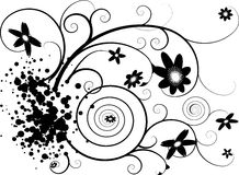 Floral splat Stock Photography