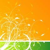 Floral splatter design. Floral design on orange and green background with splatter Royalty Free Stock Photography