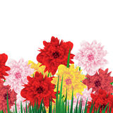 Floral Spring Background With Colorful Flowers. Greetings Card. Stock Image