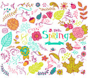 Floral spring design elements in doodle style Royalty Free Stock Images
