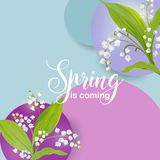Floral Spring Design Template for Card, Sale Banner, Poster, Placard, Cover, T-shirt Print. Background with Lily Flowers. Vector illustration Royalty Free Stock Image