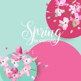 Floral Spring Graphic Design with Cherry Blossom Flowers for T-shirt, Fashion Prints Royalty Free Stock Images