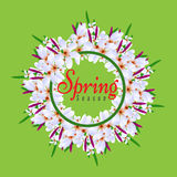 Floral Spring Graphic Design round circle border with Colorful flowers Stock Images