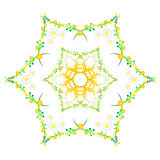 Floral spring pattern with chamomile and mimosa in kaleidoscope Stock Photo