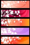 Floral spring red banners Royalty Free Stock Images