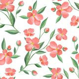 Floral spring seamless pattern. Watercolor. Floral seamless pattern. Watercolor background with red flowers Stock Image