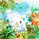 Floral spring and summer design, watercolor painting Royalty Free Stock Photography