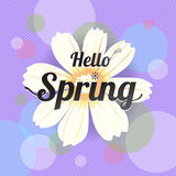 Floral spring with white flower Royalty Free Stock Photo