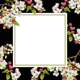 Floral square background template with apple blossom vector illustration