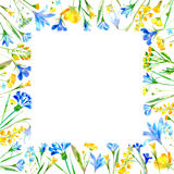 Floral square frame of a wild flowers and herbs on a white background. Wreath of a buttercup,cornflower,bluebell,forget-me-not,lobelia,snowdrop flowers Stock Image