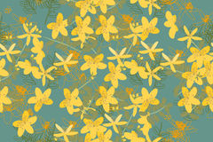 Floral St.John's Wort  retro vintage background Stock Photography