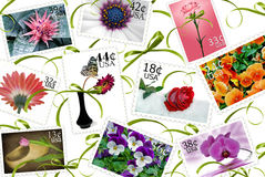 Floral Stamps. Floral stamp collection on ribbon background stock illustration