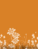 Floral Stationery Stock Photos