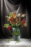Floral still life Stock Images