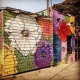 Floral Street Art Decorating a Venice Beach Business stock image