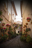 Floral streets of Spello in Umbria, Italy. Stock Image
