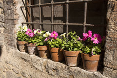 Floral streets of Spello in Umbria, Italy. Royalty Free Stock Image