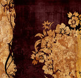Floral style backgrounds Stock Photos