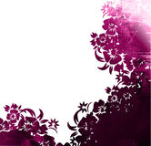 Floral style frame Royalty Free Stock Image