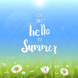 Floral summer background with chamomiles. Say hello to summer handwritten illustration. Floral summer background with chamomiles. Say hello to summer Stock Image