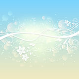 Floral summer background Stock Photos