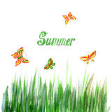 Floral summer background with grass and butterfly. Watercolor Texture. Royalty Free Stock Photos