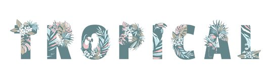 Floral summer pattern hand drawn TROPICAL palm leaves, flowers, birds. Floral summer pattern hand drawn ornamental text TROPICAL with palm beach leaves, flowers Royalty Free Stock Photos