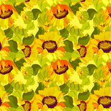 Floral sunflower and leafs seamless pattern background Royalty Free Stock Photo