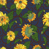 Floral  sunflower Seamless pattern. Royalty Free Stock Photo