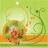 Floral swirl elements. Vector illustraition of retro abstract floral swirl elements Royalty Free Stock Photo