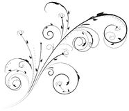 Floral swirl ornament Stock Images